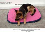 Colchonetas largas large para mascotas navidad 2011