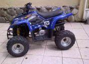 Cuadron 110cc