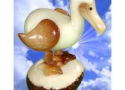 Dronde (endangered species) figurine ornament tagua exotic ivory
