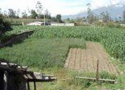 Venta de un terreno en la parroquia natabuela