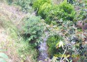 Vendo terreno en agumbuela