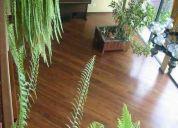 Bambu pisos de madera solida