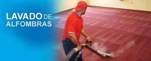 Lavadora de alfombras 0,95 centavos el metro cuadrado