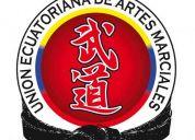Curso de artes marciales en el sur de quito