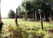 Cod. 48461  hacienda de 53.77 hectareas de terreno en la paz-nabon precio $185.000 neg.