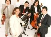 Músico's en vivo para bodas eventos sociales, empresariales y familiares