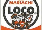Mariachi loco- quito