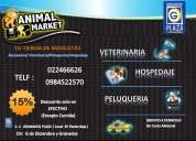 Animal market pet shop grandes descuentos para tu mascota