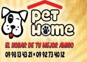 Casas para perros varios colores y tamaÑos