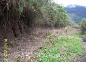 Se vende propiedad de 4000 hect(riobamba)