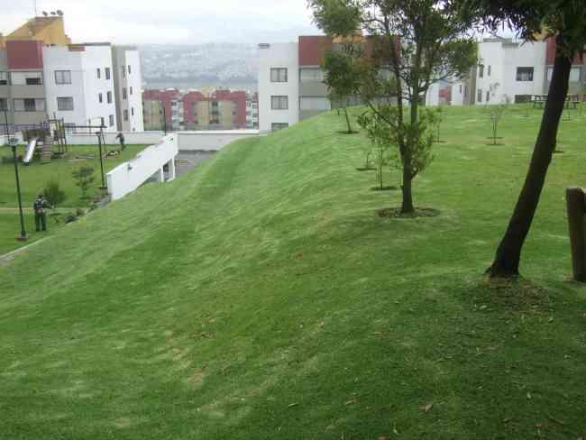 Verde jard n jardiner a profesional quito doplim 294418 for Jardines verticales quito ecuador