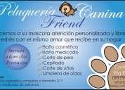 "Peluquería canina ""friend"" - guayaquil"