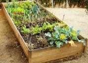 Cultiva tus propios alimentos, huertos urbanos caseros