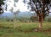 Terreno de 12000m2 la mana - cotopaxi, con 100m2 de frente a la carretera