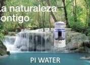 Purificador de agua piwater