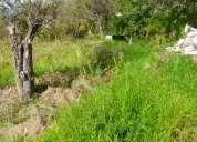 Terrenos desde 215 m hasta 3019 m en andiglata cercano a ficoa