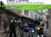 Servicio de fumigacion y control integral de plagas urbanas