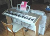 Gran piano portable dgx 500