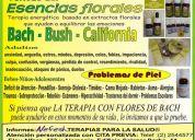 comprar flores de bach en cuenca azuay ecuador