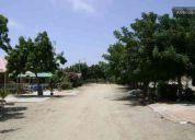 Cabañas guibu's  hwy   in playas