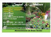 Jardinero  pÀra mantenimiento de areas verdes