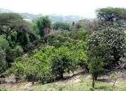 Guayllabamba terreno 21.568 m² quito