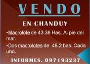 Chanduy venta terreno 140 ha.