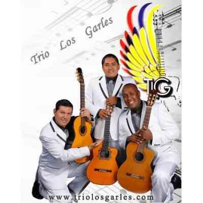 ESTUDIO DE GRABACION TLG PRODUCCIONES  02-668-139  02-615-167  099-026-240    082-114-659