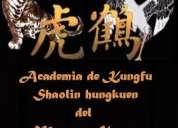 academia de kungfu shaolin hungkuen del maestro kcowa