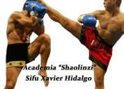 Artes marciales academia de kung fu  kick koxing choy gar shaolinzi