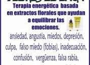 Cursos y terapias flores de bach quito guayaquil loja cuenca