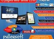 Pulleysoft diseño de páginas web