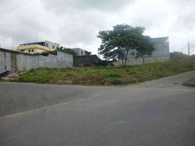 Terreno ubicado en el sector de jacarin deleg