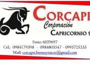 Busca local comercial.. tenemos locales comerciales en el sector norte de guayaquil