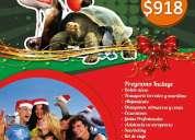 Tour a galapagos