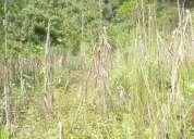 Hermosa finca de oportunidad 27 hectáreas