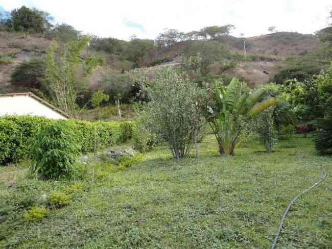 Bonito terreno en yunguilla sector sol y agua,sembrado con arboles frutales $ 33.000 NEG.