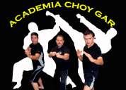 Artes marciales mixtas en guayaquil academia choy gar