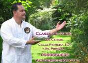 Clases de taichi en guayaquil